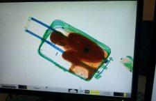 Швајцарски граничари открили мигранта у путној торби (видео)