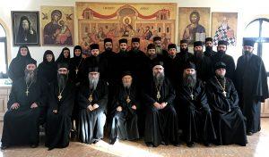 """Oficjalne stanowisko Eparchii Raszko-Prizreńskiej (na wygnaniu) Serbskiej Cerkwi Prawosławnej w kwestii wilczego tzw. """"soboru"""" kreteńskiego"""