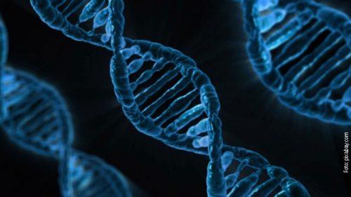 Бурна реакција јавности због генетски модификованих близнакиња
