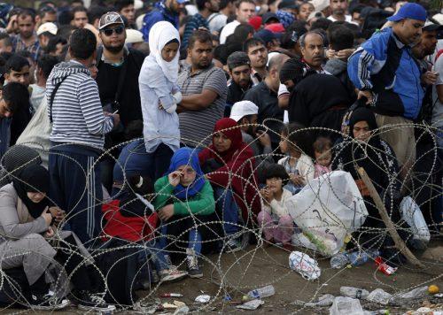 Године које ће појести мигранти