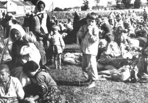 Children-of-Jasenovac-7
