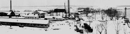 Jasenovac7