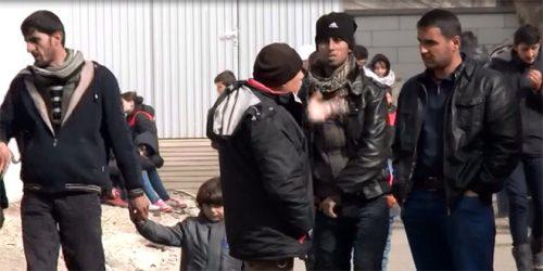 Синиша Тодоровић: Вучићу, шта ћеш с мигрантима?