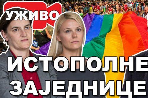 Србија би се морала заштитити од овакве министарке и од такве памети