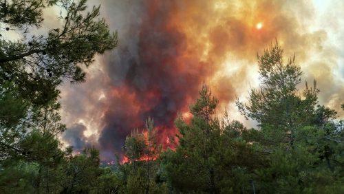 Србин са Евије: Заиста се десило чудо – ватра стала испред манастира!